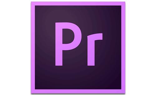 Adobe Premiere Pro CC 2019 v13.1.2.9 x64 简体中文注册版-4D蚂蚁